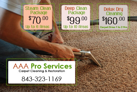 marketing carpet cleaning flyers
