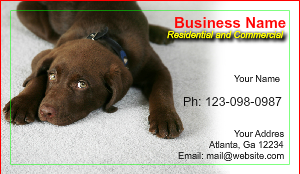 [Image: Carpet Cleaning Business card template]