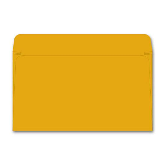 [Image: Card File Expansion Envelope, 40 Lb Kraft]